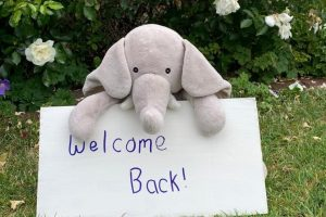 welcome back sign resize
